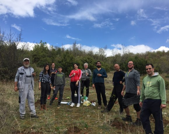 400 trees planted within a glance