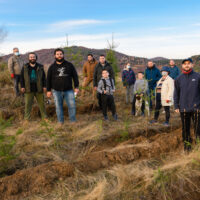4000 trees planted at Plackovica (The Treebanksers)